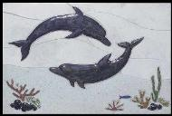 two dolphins swimming over a reef mural